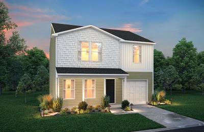 Hinesville Single Family Home For Sale: 227 Telfair Drive