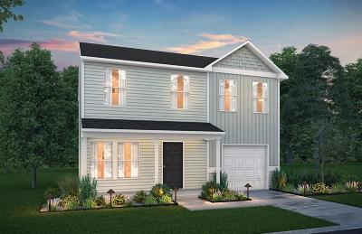Hinesville Single Family Home For Sale: 307 Telfair Drive