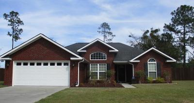 LUDOWICI Single Family Home For Sale: 392 Burnt Pines Road NE
