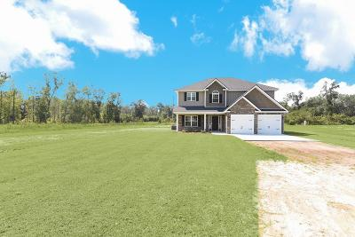 Ludowici GA Single Family Home For Sale: $260,000