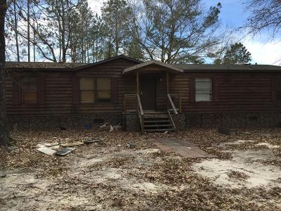 Ludowici Single Family Home For Sale: 113 Turpentine Road