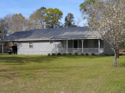Jesup Single Family Home For Sale: 295 Dogwood Extension