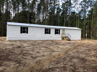 Jesup Single Family Home For Sale: 653 Yellow Pine Road