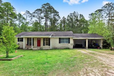 Ludowici Single Family Home For Sale: 552 North McDonald Street