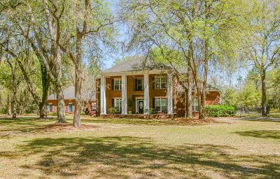 Richmond Hill, Allenhurst, Hinesville, Midway, Walthourville, Glennville, Jesup, Screven Single Family Home For Sale: 148 Big Oak Road