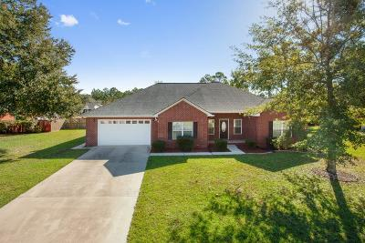 Hinesville Single Family Home For Sale: 182 Taylor Wells Lane