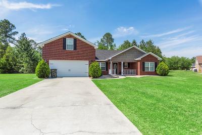 Ludowici Single Family Home For Sale: 242 Virginia Lane NE