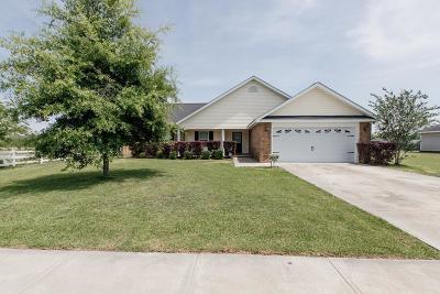 Ludowici Single Family Home For Sale: 23 Mancey Garrason Loop NE