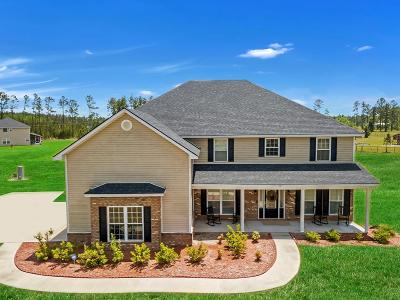 Ludowici Single Family Home For Sale: 586 Prince Road SE