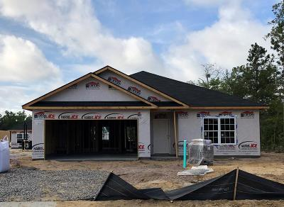 Hinesville Single Family Home For Sale: 424 Alcott Circle