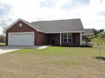 Ludowici Single Family Home For Sale: 60 Mancey Garrason Loop NE