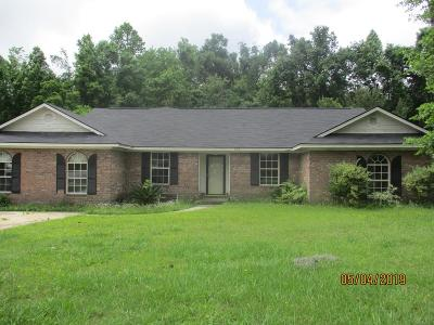 Hinesville Single Family Home For Sale: 393 Meloney Drive