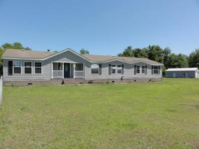 Ludowici Single Family Home For Sale: 382 Turpentine Road