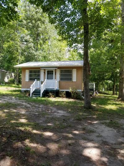 Jesup Single Family Home For Sale: 75 Iris Lane
