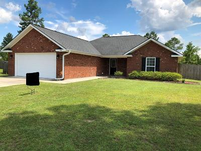Ludowici Single Family Home For Sale: 170 Mill Pond Lane SE