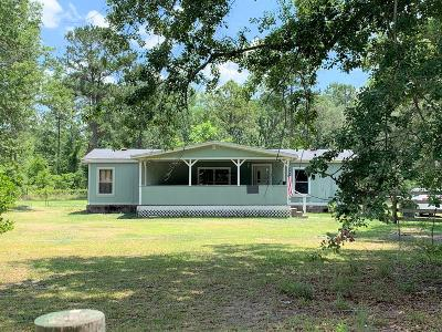 Ludowici Single Family Home For Sale: 327 Martin Road