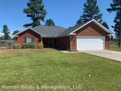 Ludowici Single Family Home For Sale: 103 Mill Pond Lane SE
