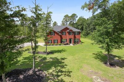 Long County Single Family Home For Sale: 393 Palmer Road NE