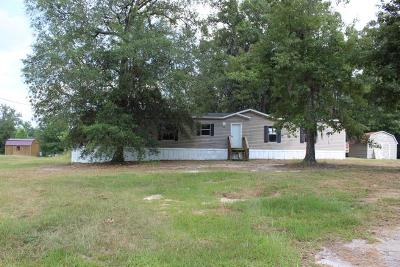 Riceboro Single Family Home For Sale: 79 Smiley Loop Road