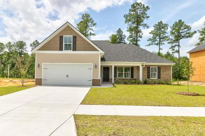 Chatham County Single Family Home For Sale: 333 Coconut Drive