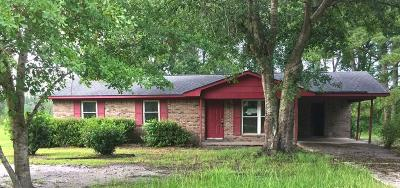 Riceboro Single Family Home For Sale: 427 Briar Bay Road