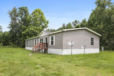Long County Single Family Home For Sale: 3482 Old Macon Darien Road SE