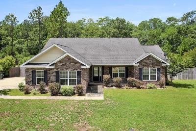 Ludowici Single Family Home For Sale: 358 Carson Street NE