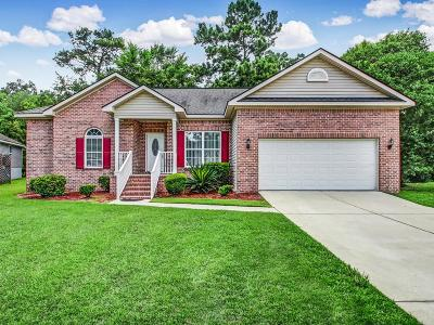 Chatham County Single Family Home For Sale: 117 Live Oak Lane