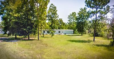 Jesup Single Family Home For Sale: 310 Seminole Woods Drive