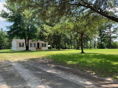 Ludowici Single Family Home For Sale: 185 White Road
