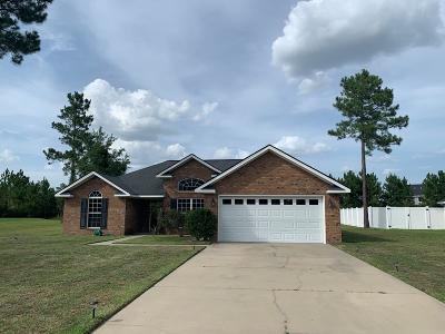 Ludowici Single Family Home For Sale: 494 Burnt Pines Road NE