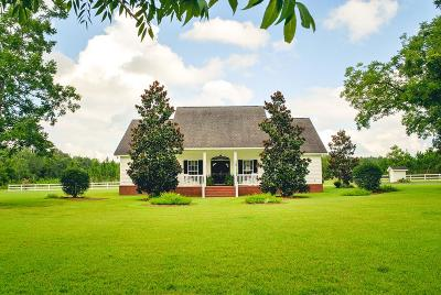 Jesup Single Family Home For Sale: 1115 Bear Branch Road