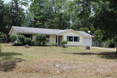 Hinesville Single Family Home For Sale: 227 Thiess Branch Drive