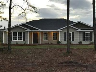 Hortense Single Family Home For Sale: 16930 Hwy 341 South