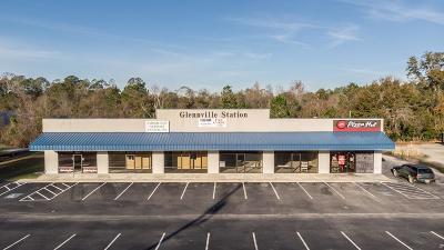 Commercial For Sale: 736 North Main Street