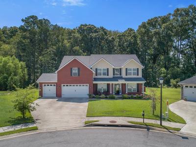Hinesville Single Family Home For Sale: 719 Eden Lane