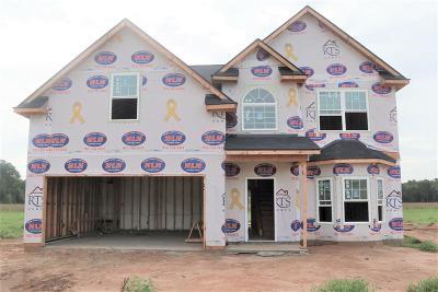 Ludowici GA Single Family Home For Sale: $206,945