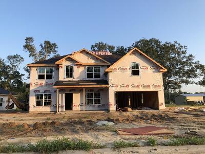 Ludowici GA Single Family Home For Sale: $230,700
