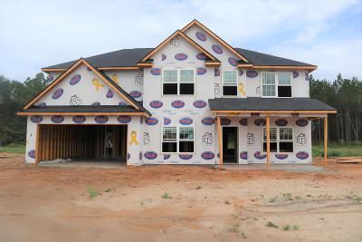 Ludowici GA Single Family Home For Sale: $242,255