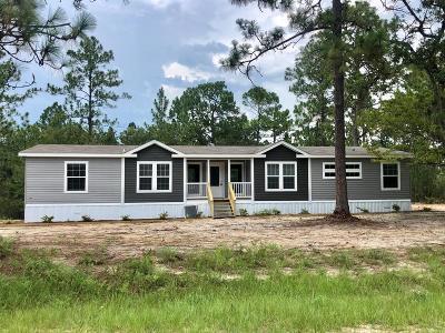 Jesup Single Family Home For Sale: 1233 Cherokee Lake Road