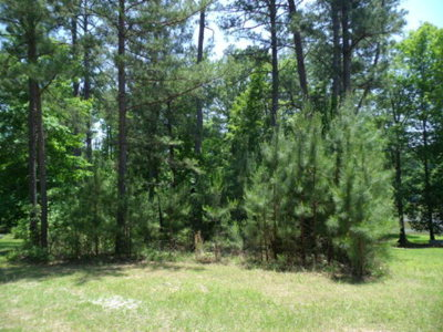 Eatonton GA Waterfront For Sale: $135,000