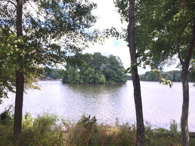 Milledgeville GA Waterfront For Sale: $235,000