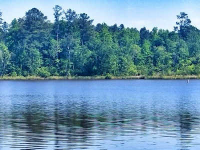 Waterfront For Sale: Lt 654 Parham Rd