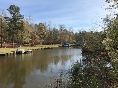 Waterfront For Sale: Lot 4 Bluegill Rd