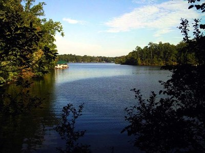Waterfront For Sale: Lot 13 Sinclair Bluff Dr.