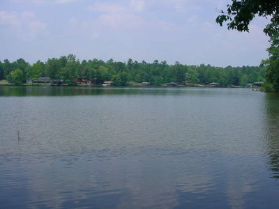 Waterfront For Sale: Lot 20 Lake Crest Drive