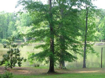 Milledgeville GA Waterfront For Sale: $345,000