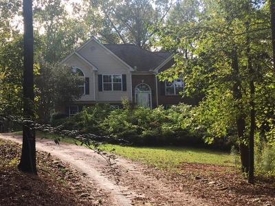 Single Family Home For Sale: 175 Ellman Drive