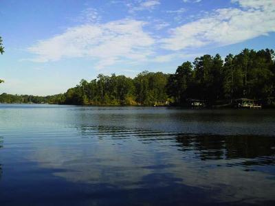 Waterfront For Sale: Lt.13 Sinclair Bluff Dr.