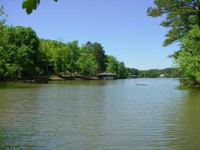 Waterfront For Sale: 17.44 Ac Sinclair Bluff